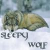 sleepywolf