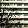 softembalmment userpic