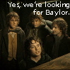 Looking for Baylor