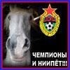 ЦСКА конь