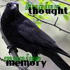 cronephotos userpic