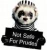 Lil' Bandit, ferret, NSFP