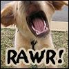 benny - rawr!