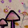 pharmaceutic userpic