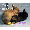Beowabbit: Sex: Important Wabbit Business