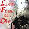 Ninjababe: 300-Live Free