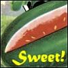 arwensouth: Sweet