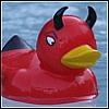 arwensouth: DevilDuck