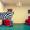 utterblackness userpic