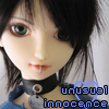 Kitten//unusual innocence
