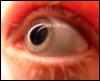 sophicalrambles userpic