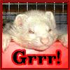 fg_beta userpic