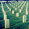 so many dead folk