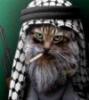 uruq userpic