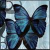 kumorisubeta userpic