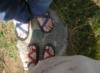 Feet at the Lump