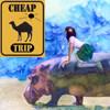 o_O: cheaptrip