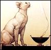 Allika: incense cat