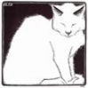 кошка бел задумч. рис