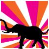 [elephant] pink/orange