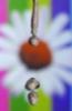mrijka userpic