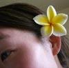 luweesa userpic