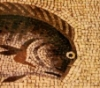 рыба-барабулька