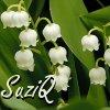 SuziQ-Lily of the Valley