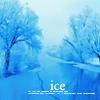 pic#invierno