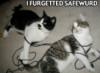 safewurd