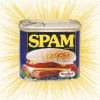 Brendan: Spam