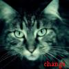 catsinspace userpic