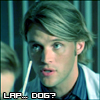 Lapdog Chase, House: Confused?