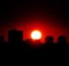 Городской Зверь!: Солнце
