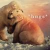 Wide Rider: Bear Hugs