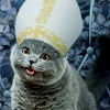 Pope Happycat