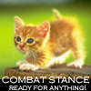 rhienelleth: kitty combat