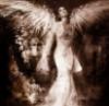 LttleDvl: angel