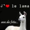 la_tortue