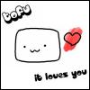 tofu is my homesoy