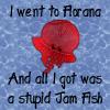 jam fish