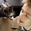 Kel: Kitten!Ten
