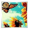 practicalgreen userpic