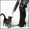 Torture Pet