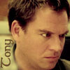 she who is the teller of tales: dinozzo
