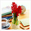 Spackle: hyacinths in a bottle with tea