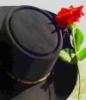 mongirl userpic
