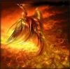 fly_phoenix userpic