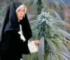 Nun and Bud