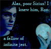 Loyaulte Me Lie: Sirius